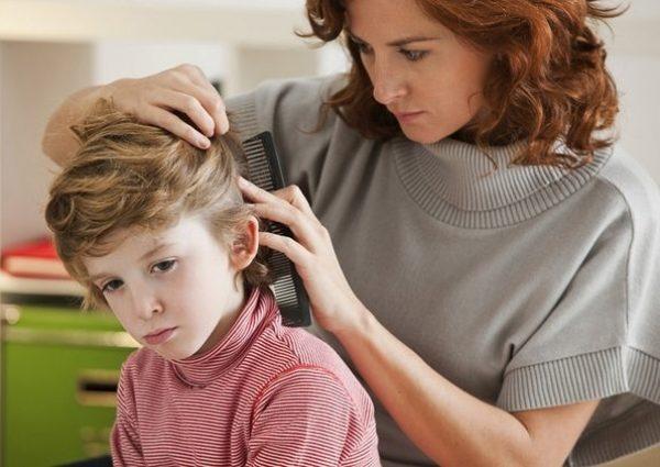 для профилактики педикулеза нужно регулярно осматривать голову ребенка