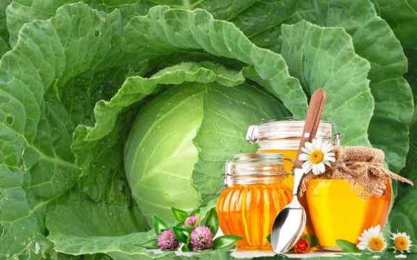 лечение фурункула под мышкой капустой с медом