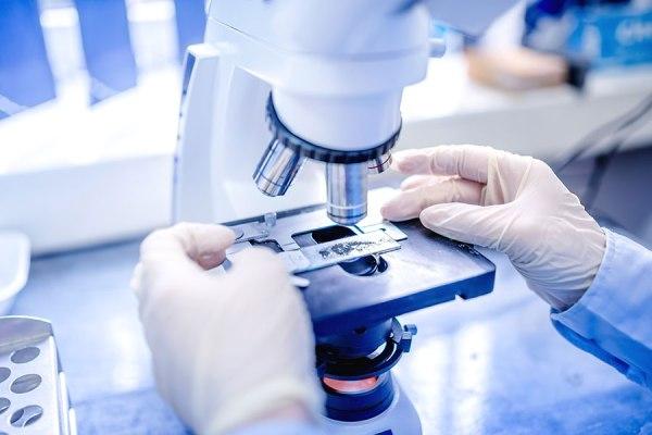 микроскопия соскоба для диагностики демодекоза на лице